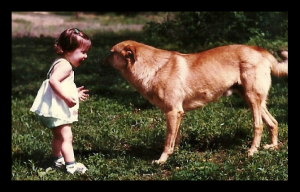 baby me with anonymous dog