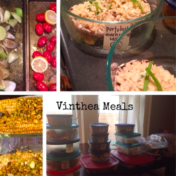 Vinthea Meal Plans